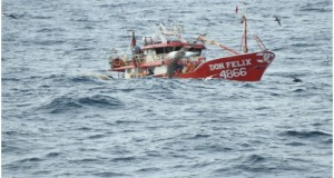 CHILE – Fipes pide evitar blanqueo de la pesca ilegal ante conflicto por la reineta