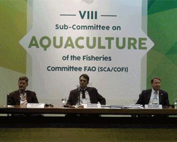 Iniciativas de FAO reciben apoyo del sector de acuicultura internacional
