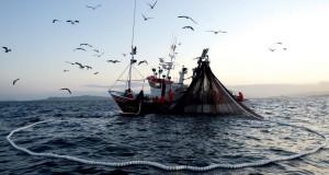 VENEZUELA – Alertan paralización de la pesca en Nueva Esparta