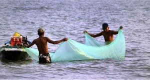 COLOMBIA – Gobierno asignó las cuotas de pesca para el 2016