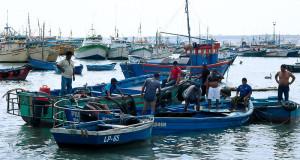 PIURA – 1.400 embarcaciones artesanales buscan obtener permiso de pesca