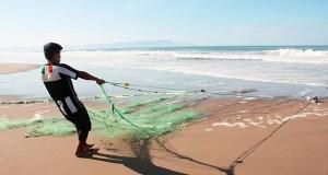 TACNA – Temperatura del Mar se incrementa hasta 3.5 grados
