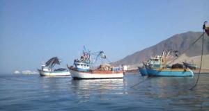 Capacidad de desembarque de recursos hidrobiológicos se multiplicará por cinco en el DPA de Morro Sama