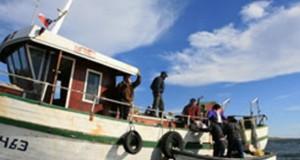 CHILE – Buscan que Certificación de los Desembarques sea Efectuada por el Servicio Nacional de Pesca y Acuicultura