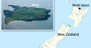 NUEVA ZELANDA – Desbartan red involucrada en comercio ilegal de mariscos