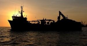 CHILE – Corea del Sur investiga pesca ilegal de buque factoría en Chile