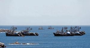 Pesca de Anchoveta suma 300 mil toneladas en 14 días