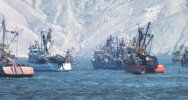 Establecen medidas para armadores de embarcaciones pesqueras atuneras extranjeras
