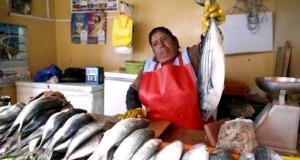 LIMA – Pescado en terminales de Villa María del Triunfo y Ventanilla oscila entre S/ 2 y S/ 30