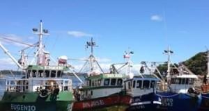 Chile amplia cierre de pesca de Anchoveta y Sardina