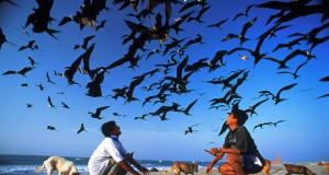 Senador de EE UU apoya la creación de Reserva Mar Pacífico Tropical