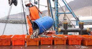 Faenón de permisos de pesca artesanal en Ica y Pisco