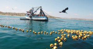 Programa de ordenamiento para pesca en presas de Sonora