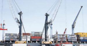PIURA – La exportación de pescados y mariscos baja hasta en 30%