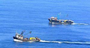 Recomiendan extender cuotas de Anchoveta a otras pesquerías