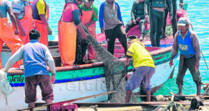 Produce recoge historias y recetas de pescadores artesanales del país