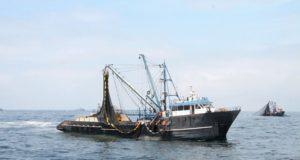 Produce: Primera temporada de pesca se adelantó cuatro días