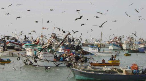 Medidas para pesca artesanal y menor escala tendrán sustento de Imarpe