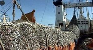 China Fishery – Acreedores cuestionan procesos de liquidación iniciados en el Perú