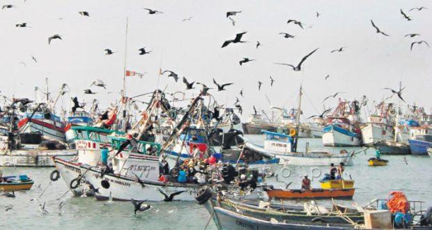 Dación de falsos permisos de pesca deben denunciarse ante la fiscalía