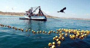 Mincetur apoya creación de reserva Mar Pacífico Tropical